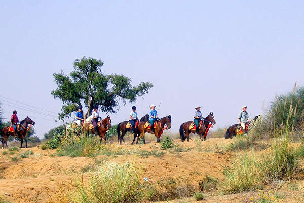 Riders in Shekhawati, India