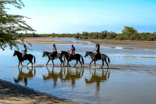 Riders in the Delta of the Sine Saloum