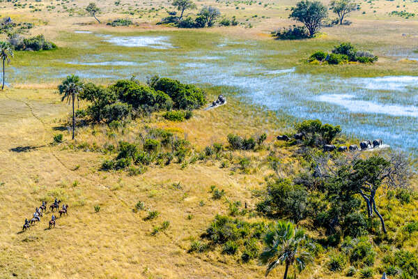 Riders in the Okavango Delta, Botswana