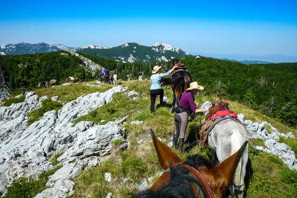 Riders on a mountainous trail with horses
