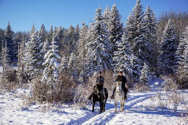 Riders on a riding holiday in Canada in the winter