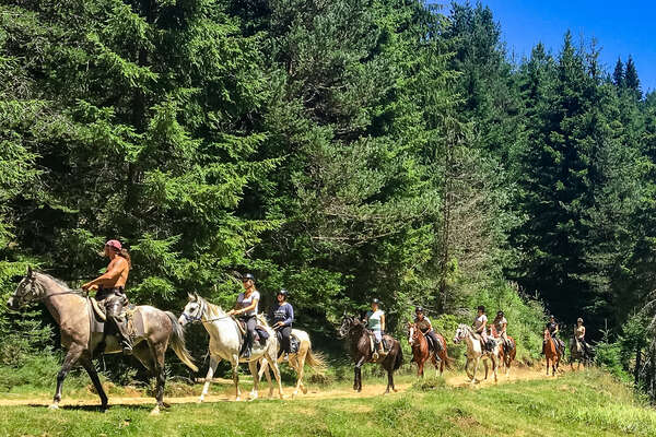 Riders on horseback in the forest in Bulgaria