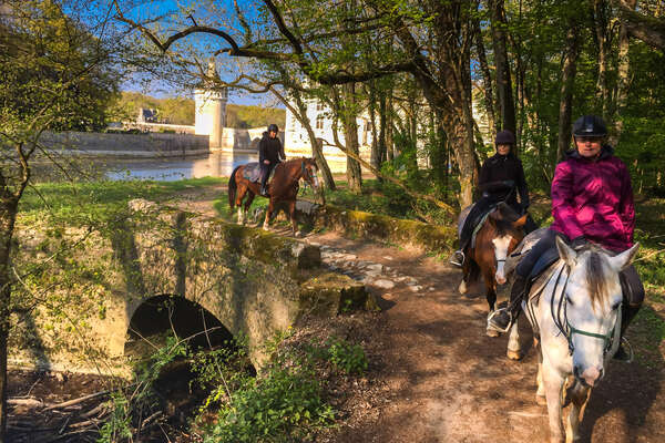 Riders on horseback in the woods near Chenonceau