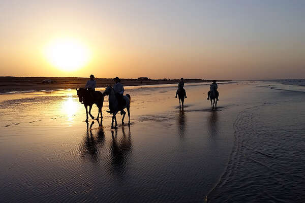 Riders on the beach in Oman