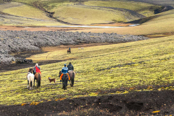 Riders riding icelandic horses in Iceland
