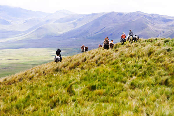 Riders riding in the parano in Ecuador on a Wildes Andes expedition