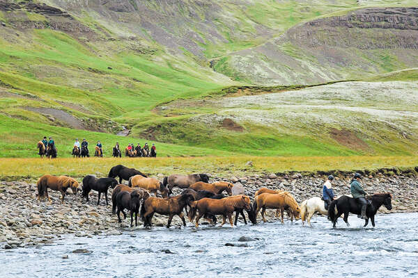 Riders watching loose Icelandic horses from a distance