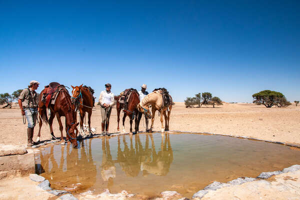 Riders watering their horses at a local waterhole during a trail