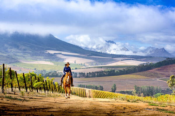 Riding against the backgdrop of the winelands mountains