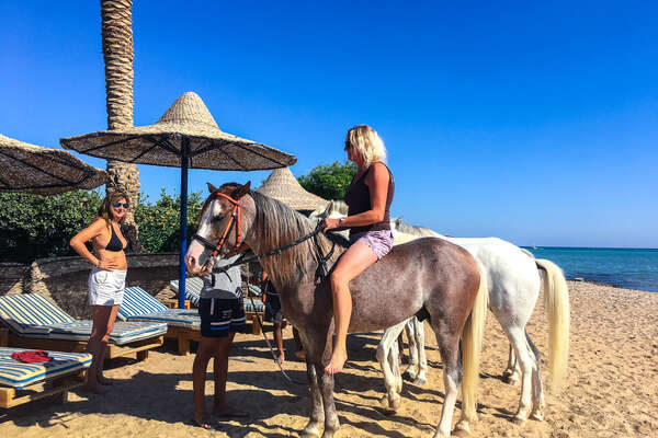 Riding alongside the red sea on Arabian horses