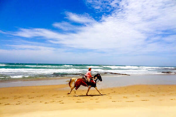 Riding cantering along the beach in South Africa