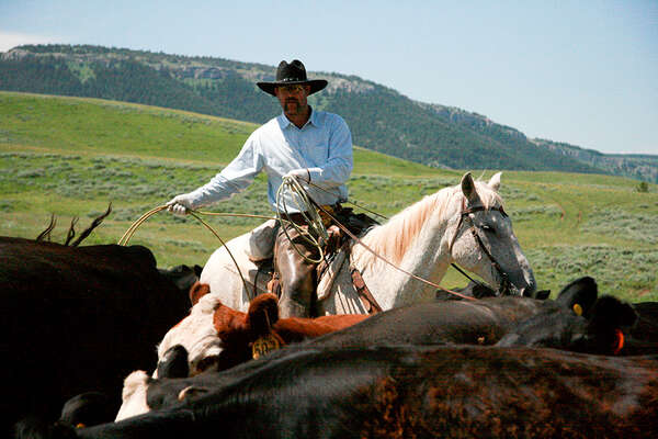Riding holiday at TX ranch and cattle drive