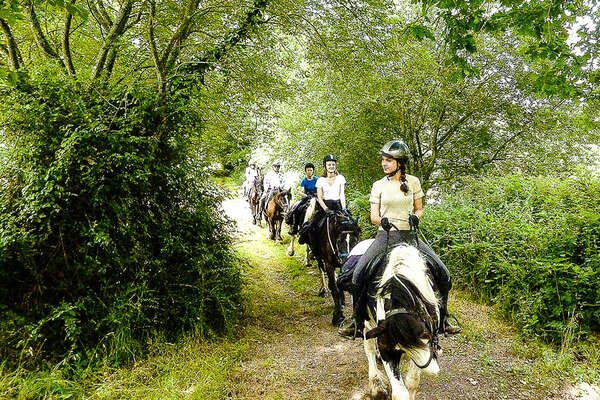Riding in the Brittany's forest, France