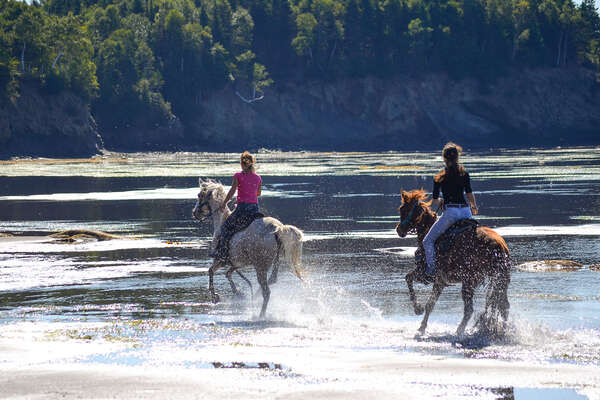 Riding in the water in Canada during a trail riding holiday