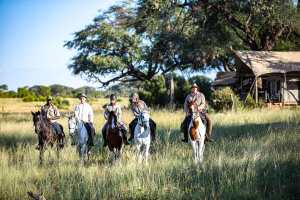 Riding out from camp in Hwange, Zimbabwe