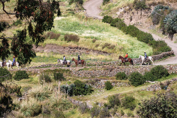 Riding trail in the heart of the Andes