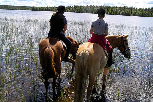 Summer horseback trail in Finland