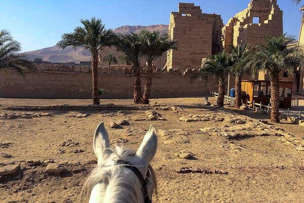 Temples seen from horseback in the Valley of the Kings