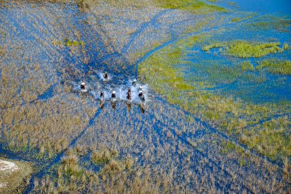 The floodplains of the Okavango, Botswana