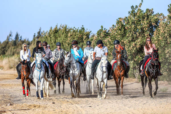 Trail riders and horses in Egypt