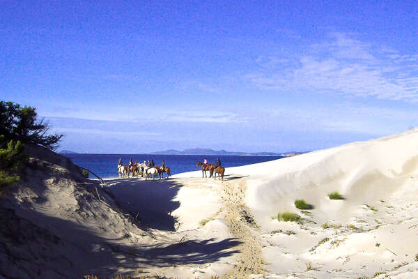 Trail riders on horseback in Sardinia, standing on a beach and watching the sea