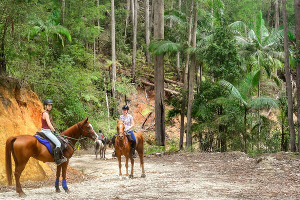 Trail riders riding in Australia, New South Wales
