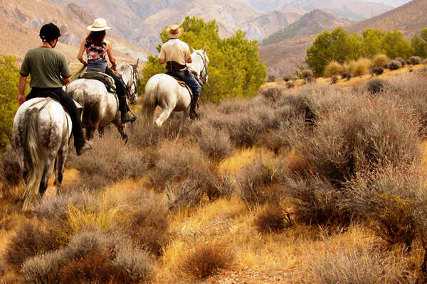 Trail riding in Andalusia
