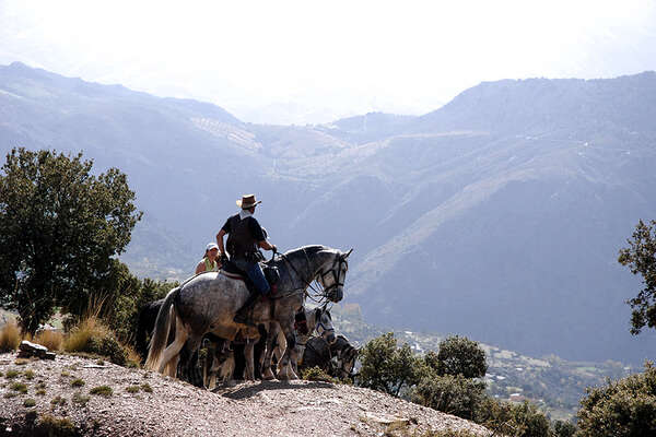 Trail riding in Andalusia, Spain