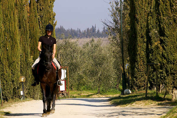 Tuscan Farmhouse and Equestrian Centre