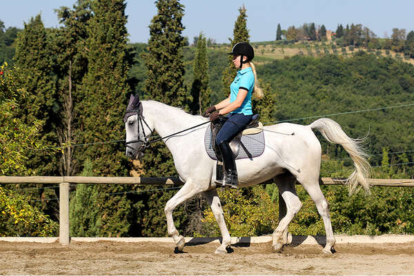 Tuscany and classical dressage training