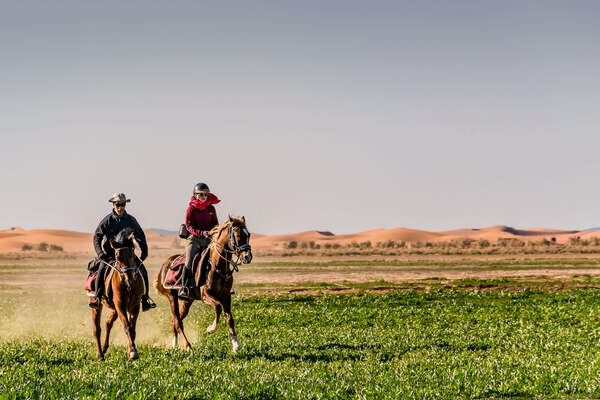 Two riders cantering on green grass in the Sahara