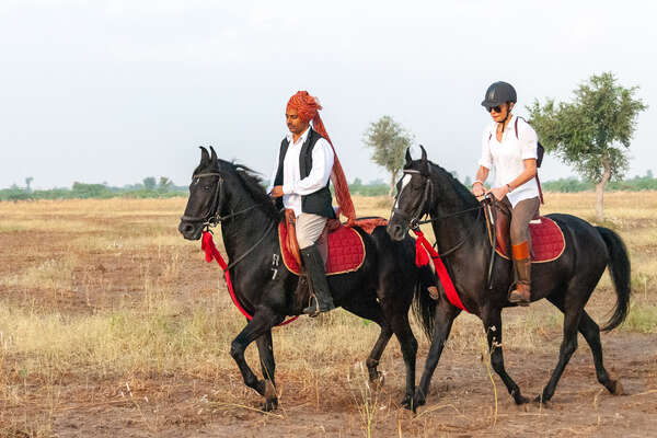 Two riders in India riding in a field in Rajasthan