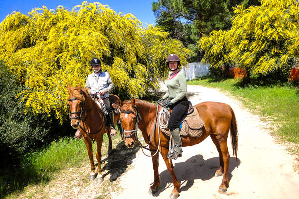 Two riders with trees in bloom behind them and their horses