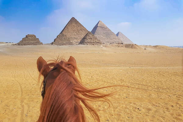 Watching the pyramids between the ears of an Arabian horse