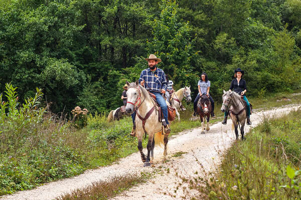 Western riding holiday in Croatia