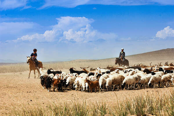 Young riders learning from Mongolian shepherds